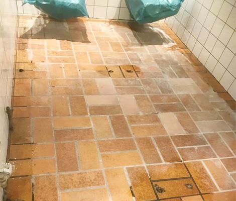 Alster Nord Gebäudedienstleistung GmbH - Bestandsbodensanierung